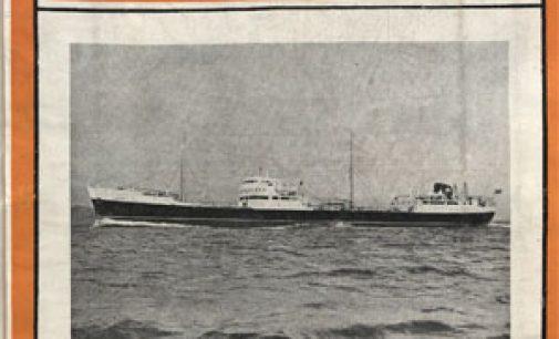 ENERO 1955