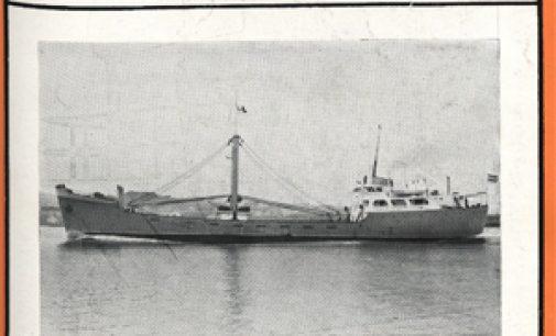 MAYO 1956