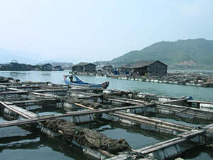 aquaculture_in_lo-nguong_china