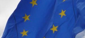 La Comisión Europea Desestima las alegaciones de COIN y AINE