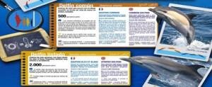 La labor divulgativa de CIRCE llega a los puertos de Almería y Málaga