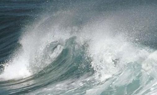 Oceana propone proteger el 12% del Mediterráneo