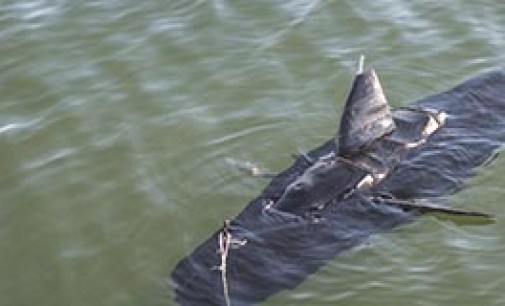 Robot con forma de atún de la US Navy