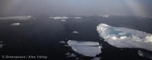 OIC debatirá la regulación de las prospecciones en el Ártico