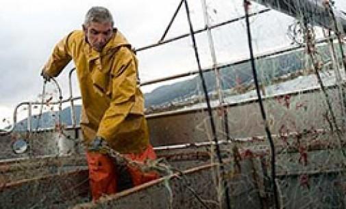 Greenpeace lanza modelo pesquero 100% sostenible
