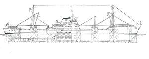 Buques de carga a motor de 7.000 tpm tipo Y de Elcano