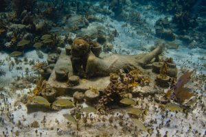 museos_submarinos_la_jardinera_esperanzada