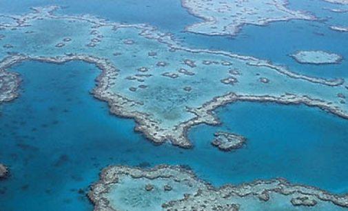 Alarmante pérdida de oxígeno de los océanos