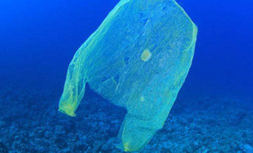 En 2050 habrá más plástico que peces en los océanos