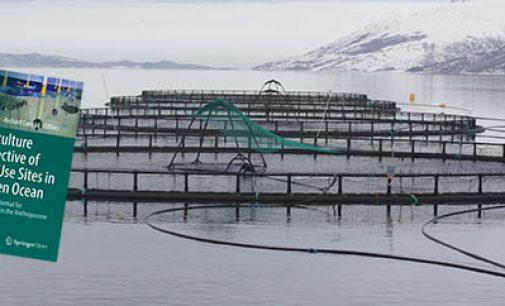 Sinergias entre la acuicultura y los parques eólicos offshore