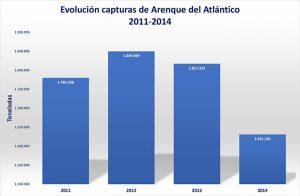 arenque_del_atlantico