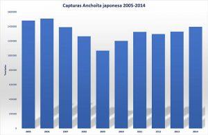 anchoita_japonesa