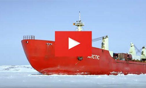 ¿Cómo aplican el Código Polar de la OMI en la Antártida?