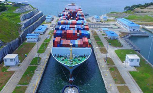 Canal de Panamá toma medidas en la protección de cetáceos