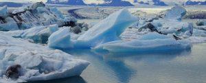 Acuerdo para evitar la pesca no regulada en el Ártico