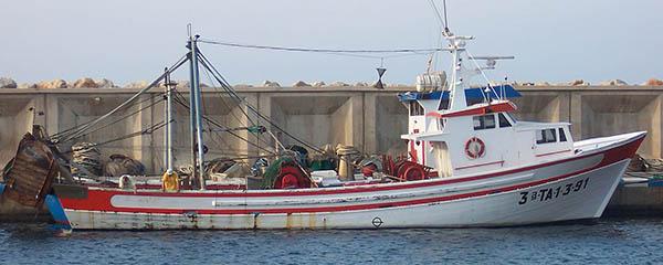 Chile protege el 98 % de su ZEE de la pesca de arrastre