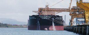 La lucha por el medio ambiente en el sector marítimo