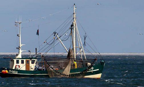 La política pesquera común de la UE para la pesca sostenible muestra resultados alentadores