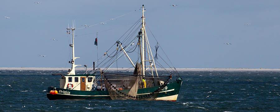politica_pesquera_comun