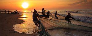 Los 10 principales países productores de pesca del mundo en 2015
