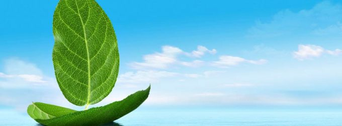 CO2, transporte marítimo y gas natural