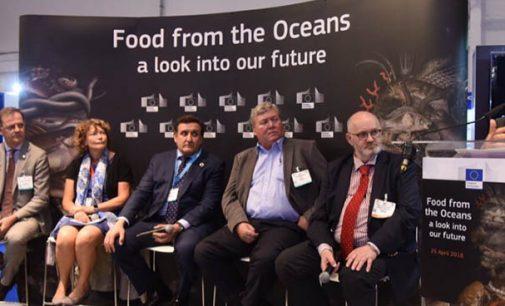 La flota atunera española propone a Europa la norma APR como estándar