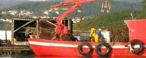 ForoAcui, foro de recursos marinos y acuicultura