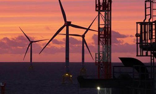 Iberdrola inicia el desarrollo de su parque eólico offshore Baltic Eagle