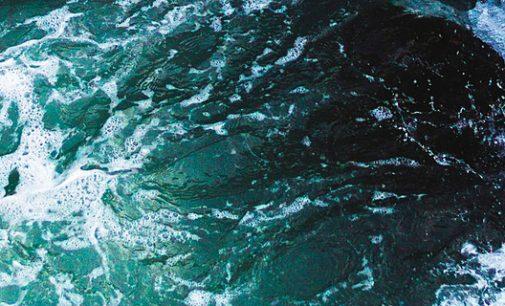 Bilbao acogerá una jornada de trabajo sobre el Convenio Internacional de aguas de lastre