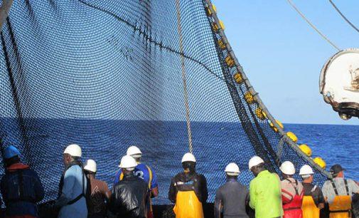 La flota atunera española se suma al Pacto Mundial de la ONU