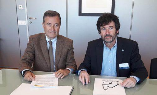 Nueva sede del IEO en el puerto de Palma