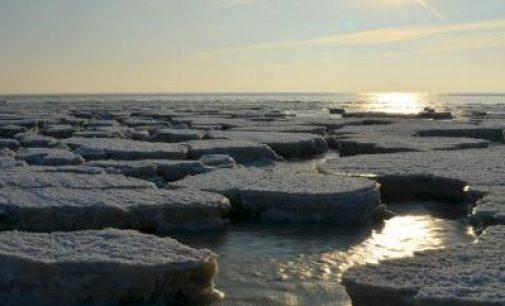 Wärtsilä instala su software para proteger las aguas árticas