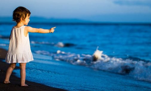 ¿Por qué celebramos el Día Mundial de los Océanos?