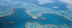 Visitando la Gran Barrera de Coral en un scUber