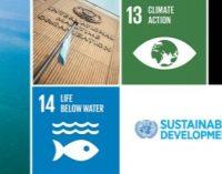 Un transporte marítimo sostenible para un planeta sostenible