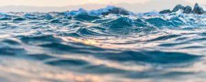 Los países miembros de la ONU se reúnen para negociar la creación del Tratado Global para los Océanos