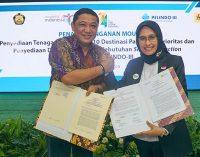 El cold ironing será una realidad en Indonesia