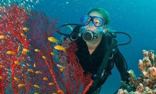 Abierto el plazo de presentación de proyectos innovadores al Ocean Innovation Challenge