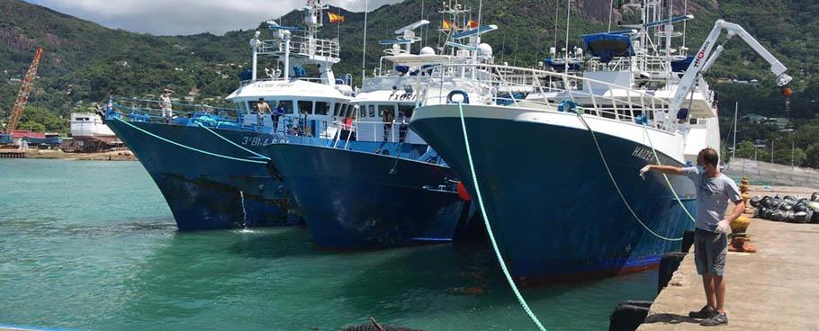 La flota atunera española trabaja en colaboración con las autoridades sanitarias de Seychelles para asegurar la salud de sus tripulaciones