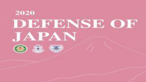 Este es el programa naval que incluye el último Libro Blanco del Ministerio de Defensa Japonés