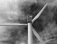 La australiana Pilot Energy presenta su proyecto eólico offshore de 1,1 GW