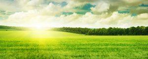 Bureau Veritas se suma al Pacto Mundial de la ONU por el desarrollo sostenible