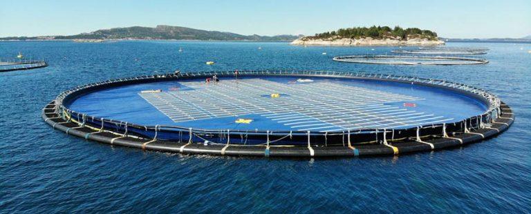 planta_solar_flotante_PLOCAN