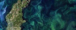 Productos e indicadores de la calidad del agua de los océanos