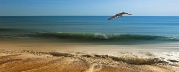 oceanos_limpios_sostenible