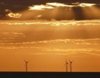 Vattenfall asume la comercialización directa del parque eólico marino Arcadis Ost de 250 MW en el Mar Báltico